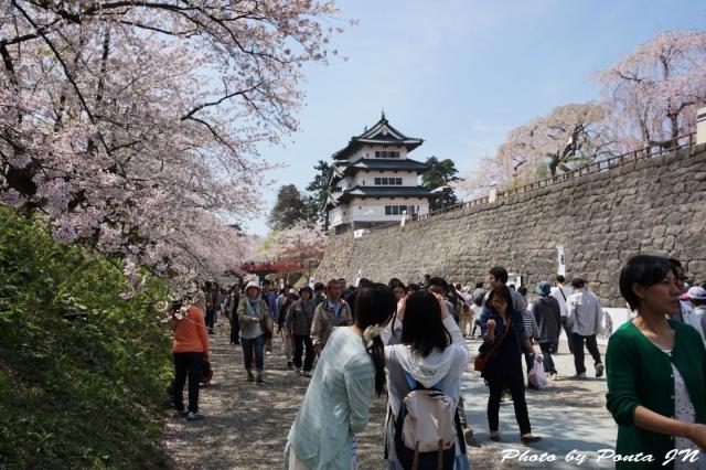 hirosaki1504-0041.jpg