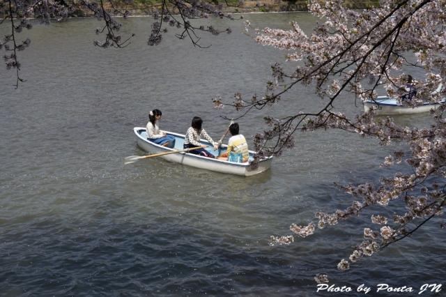 hirosaki1504-0062.jpg