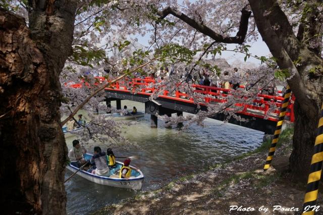 hirosaki1504-0069.jpg