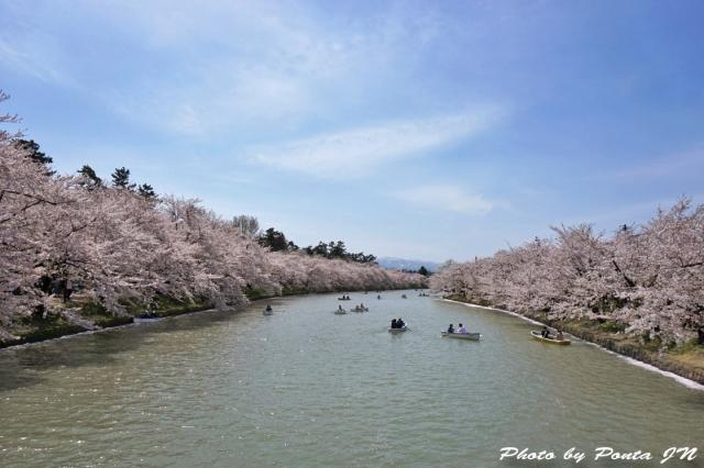 hirosaki1504-0070.jpg