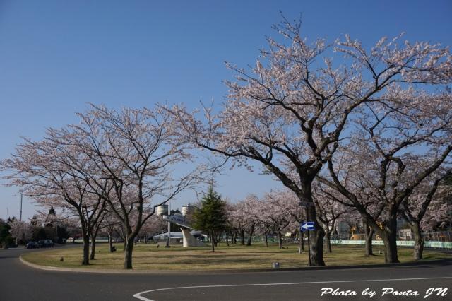 misawa15-0002.jpg