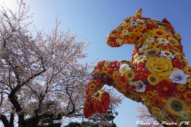 misawaenburi15-0010.jpg