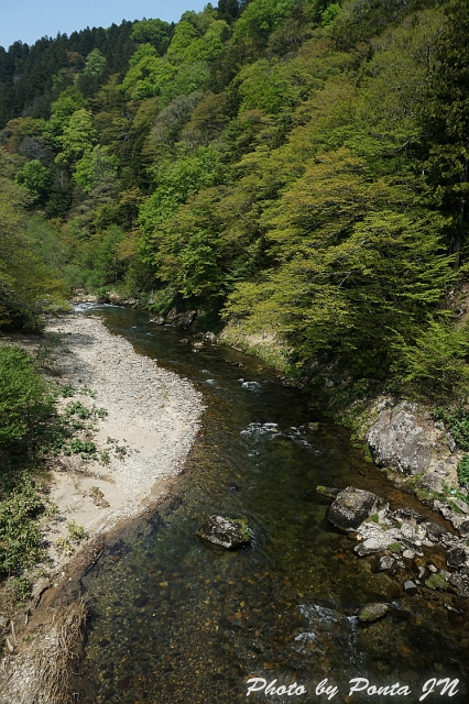 shimokita1505-0018.jpg