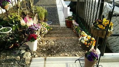 花の小径2015 3月8日