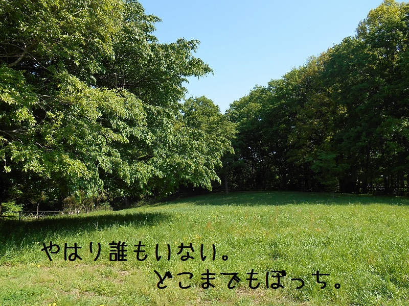 DSCN1507.jpg