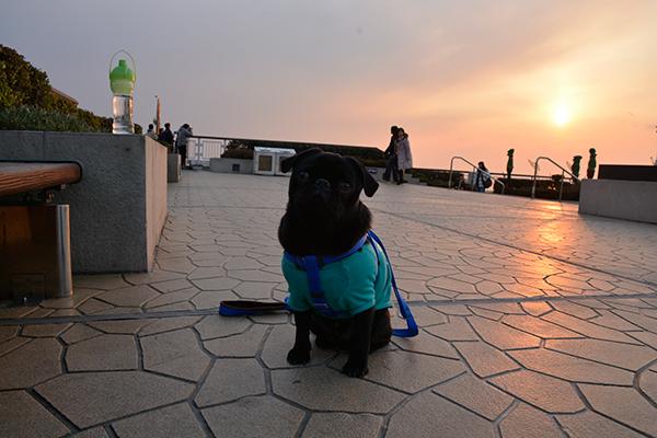 うるまと夕日