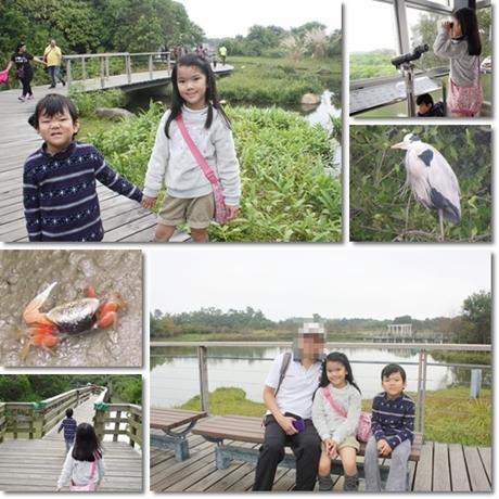 Wetland park 2