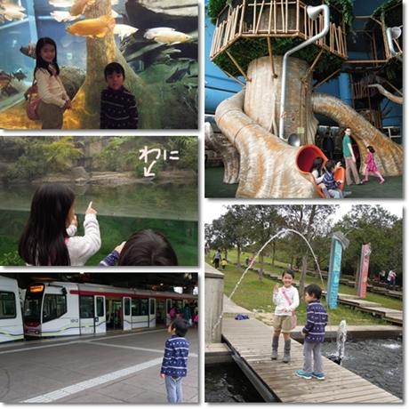 Wetland park 3