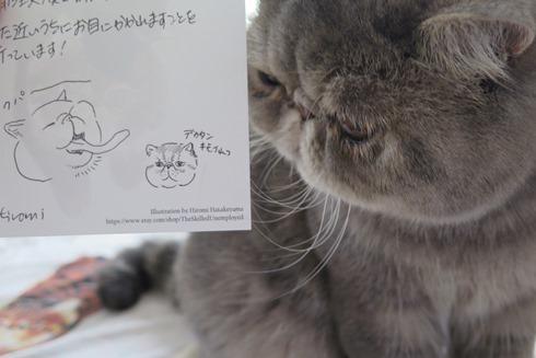 19)べべ子クリソツ~!