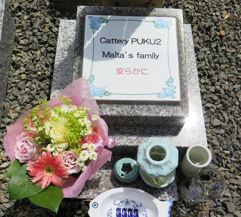 12)マルタ家のお墓