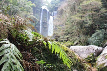 2015霧島犬飼滝と深緑