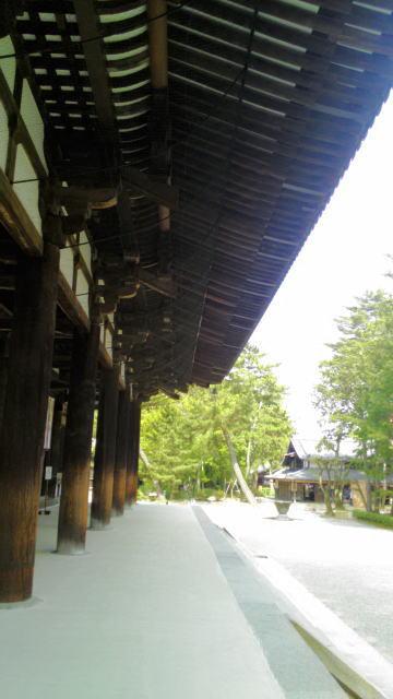 唐招提寺o18
