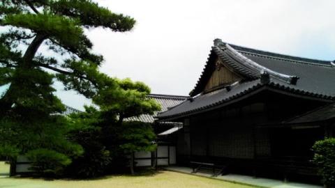 中宮寺o14