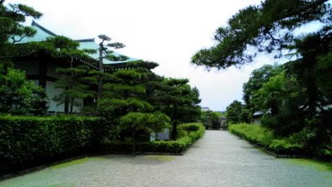 中宮寺o11