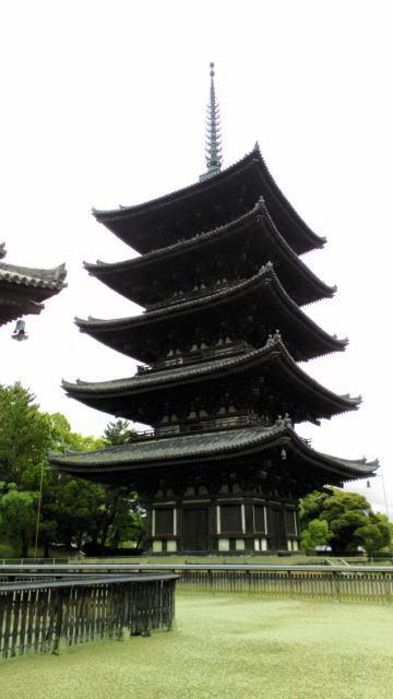 興福寺o14