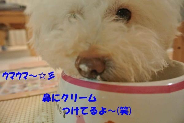 2014_0613_205637-DSC_7152.jpg