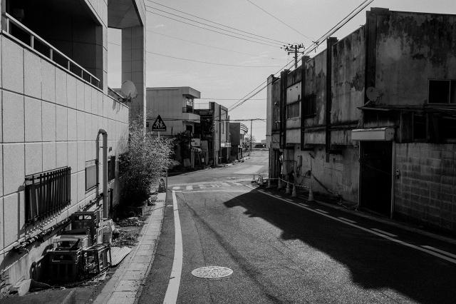 _MG_6260.jpg