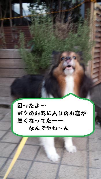 20150127_165652.jpg