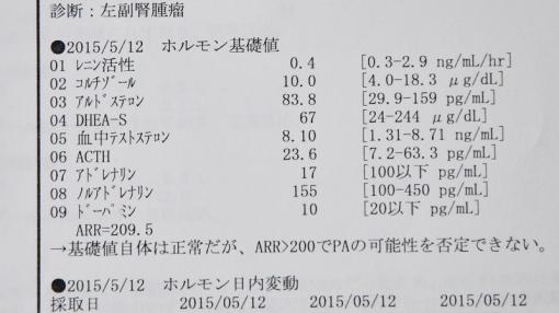 3304検査結果15693