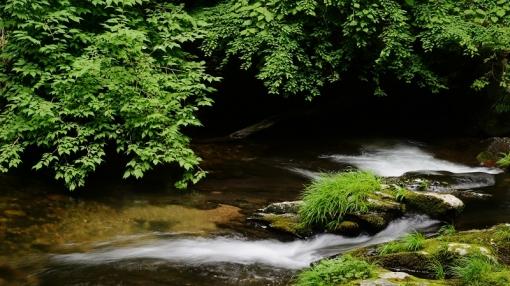 8943瀬戸の滝156137