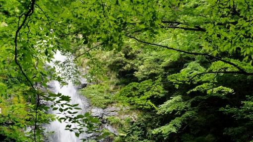 8913瀬戸の滝156135