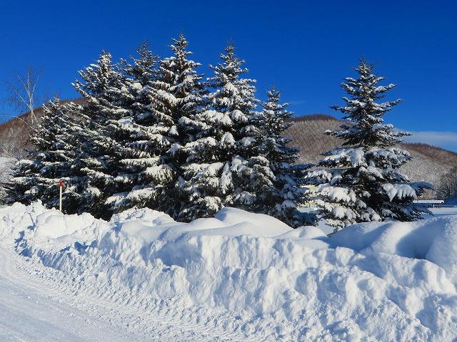 吹雪の後 016