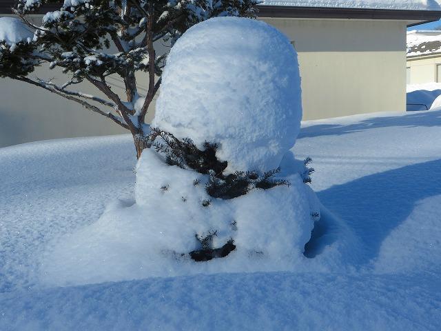 吹雪の後 011