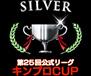 silver_team29.jpg