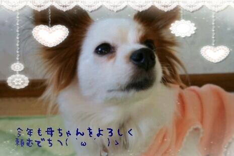 『なな』『ひな』『もこ』hug*hug-2013-01-01_14.11.40.jpg