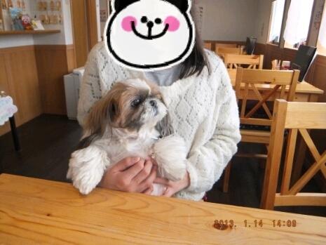 『なな』『ひな』『もこ』hug*hug-2013-01-14_17.31.50.jpg