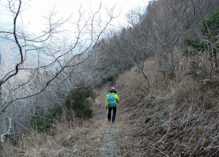 2015,1,10丹助岳-16