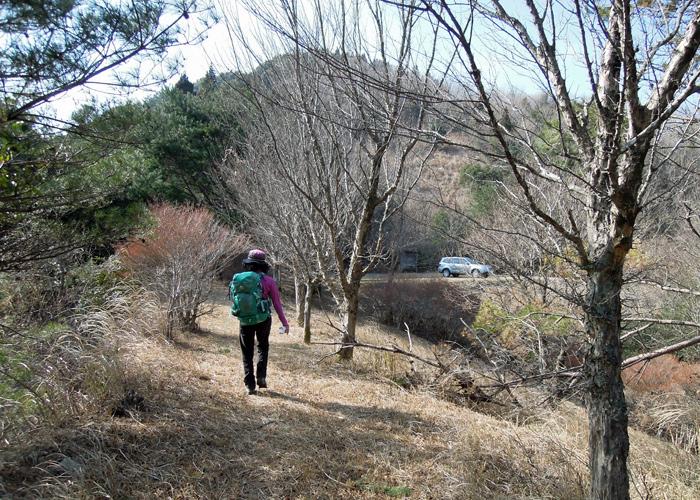 2015,1,10丹助岳-27