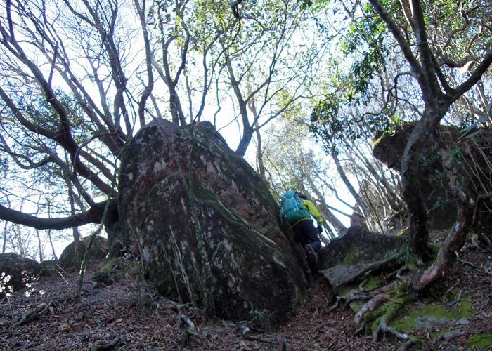 2015,1,11尾鈴山-19