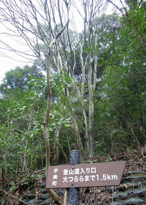 2015,2,1難所ヶ滝-2
