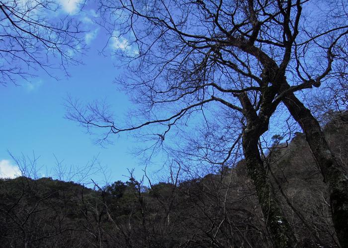 2015,2,1難所ヶ滝-21