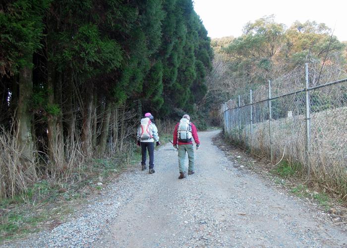 2015,3,8基山~九千部山-1