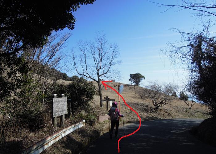 2015,3,8基山~九千部山-20