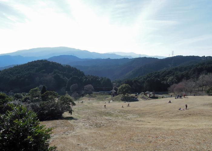 2015,3,8基山~九千部山-210