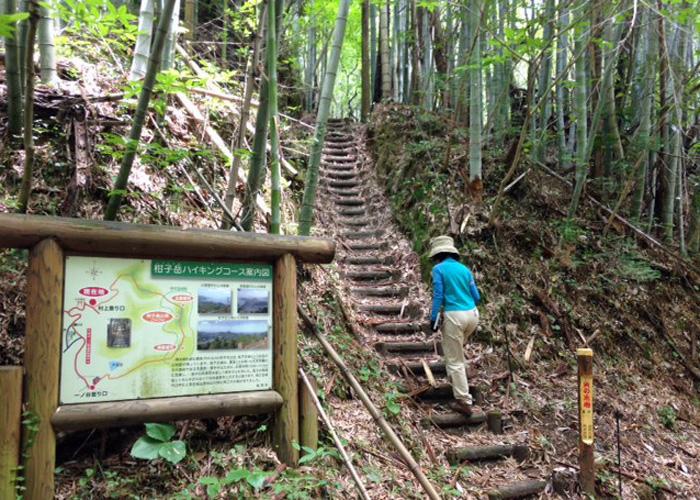 2015,5,31柑子山-6