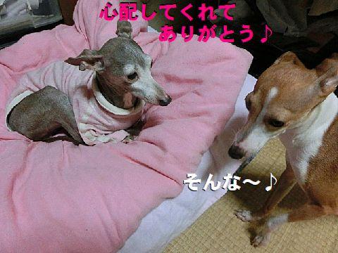 d_201503100133002e1.jpg