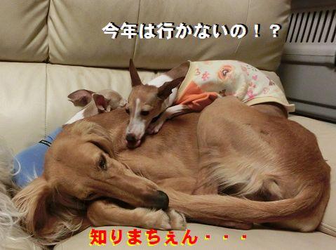 e_20150316012357702.jpg