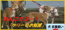 itabana3_20150610233538e6e.png