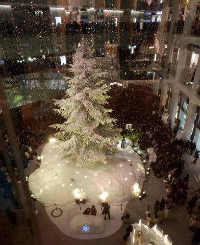 ホワイトツリー (9)
