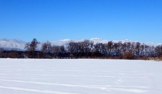 冬 (1)