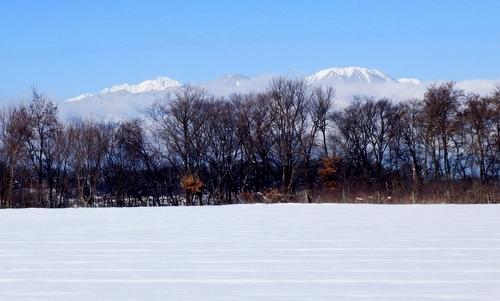 冬 (4)