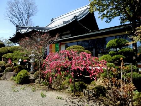 平福寺 (7)