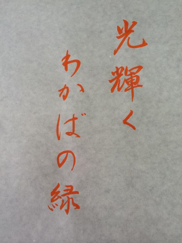 022_convert_20150410160111.jpg