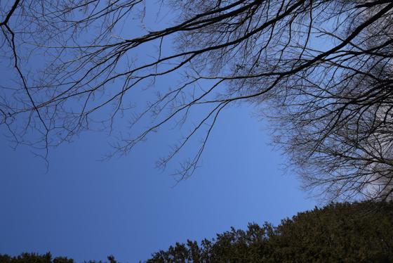15_0221_07.jpg