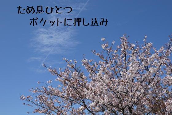 15_0423_01.jpg