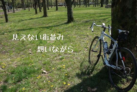 15_0423_02.jpg